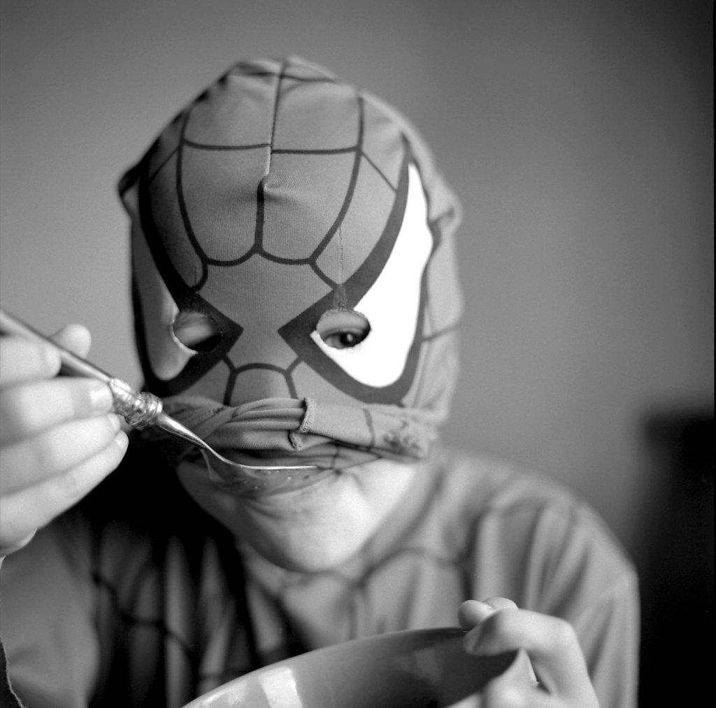 bati-spider1.jpg